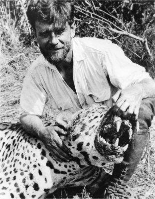 Jaguar monstro VS Tigre de Sumatra Img04510