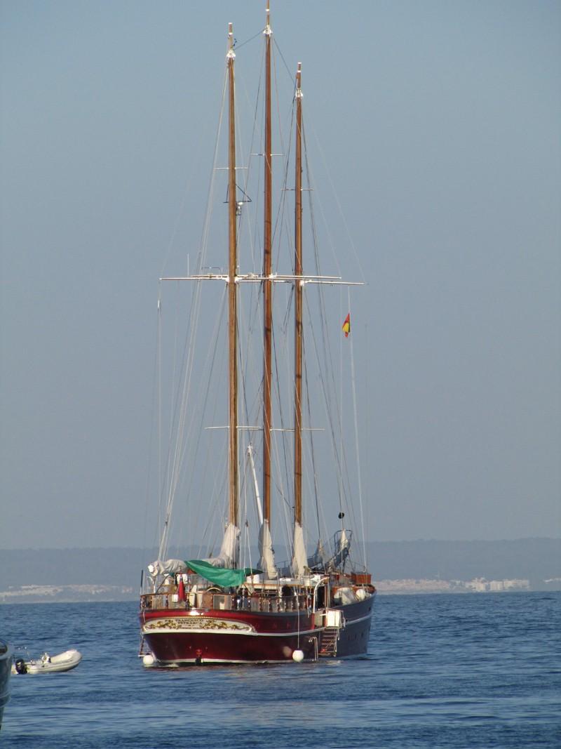 Palma Nova / Magalluf June 2011 Amf411