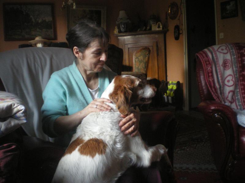 SOS Recherche des dons pour soigner Lolly ( ex Olly ) - aujourd'hui Louve n'est plus mais Lolly aurait besoin de plusieurs parrains pour les frais vétérinaire de MMme H - parrainée par Santig du - 21963310