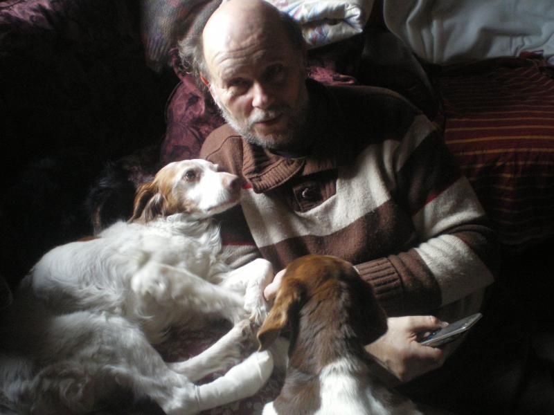 SOS Recherche des dons pour soigner Lolly ( ex Olly ) - aujourd'hui Louve n'est plus mais Lolly aurait besoin de plusieurs parrains pour les frais vétérinaire de MMme H - parrainée par Santig du - 91870710