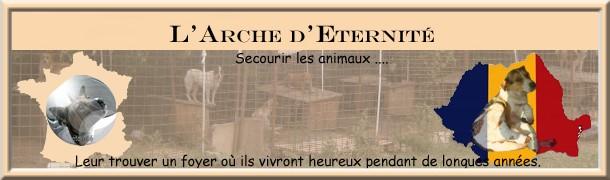 BANNIERE ARCHE FRANCE ROUMANIE Bannia11