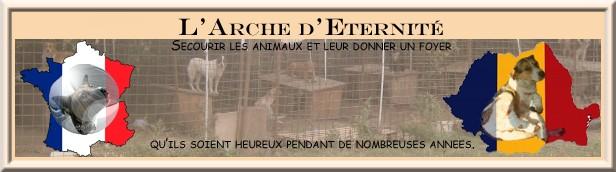 l'Arche d'Eternité  Bannia12