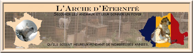 BANNIERE ARCHE FRANCE ROUMANIE Bannia13