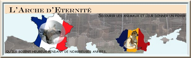 BANNIERE ARCHE FRANCE ROUMANIE Bannia14