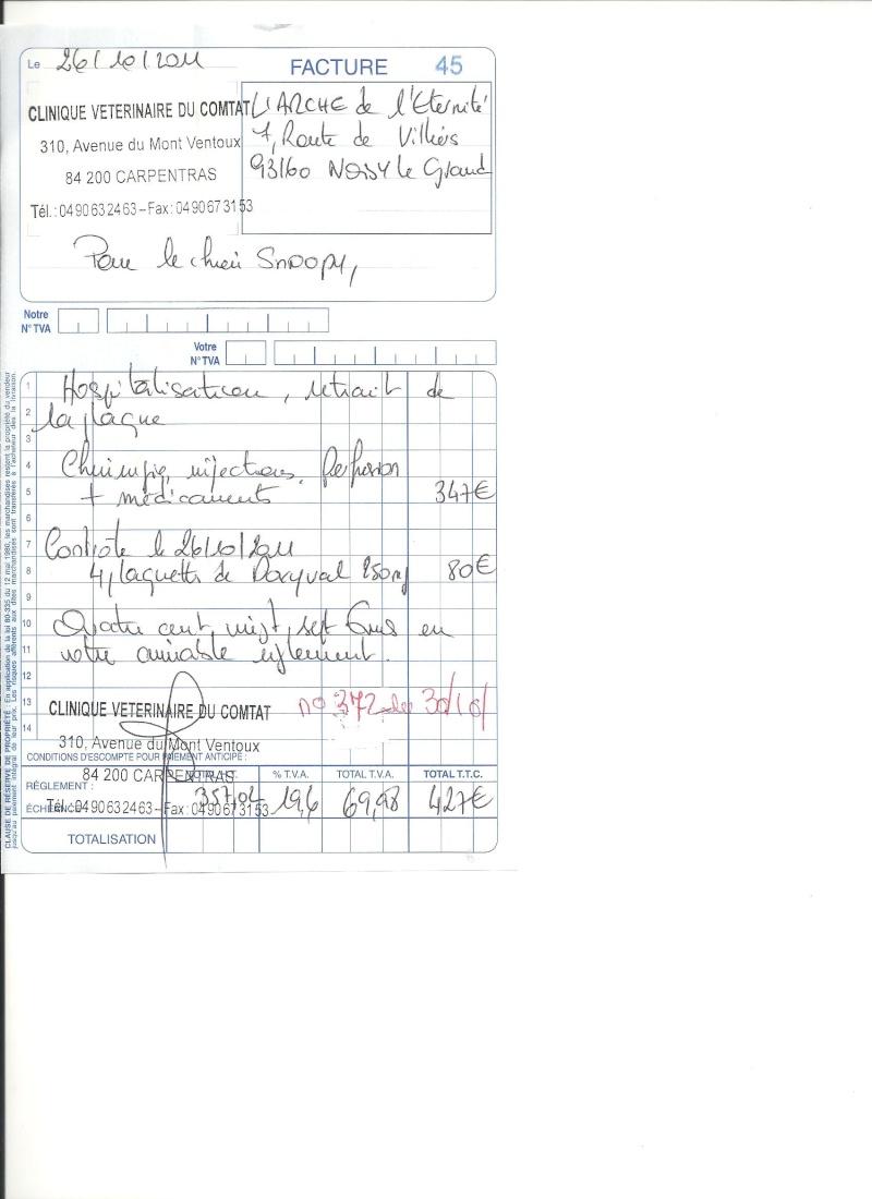 SNOOPY BA LAISSE POUR MORT A L OEIL CREVE ET LA PATTE CASSE EN SOINS INTENSIF - Page 2 Factur10