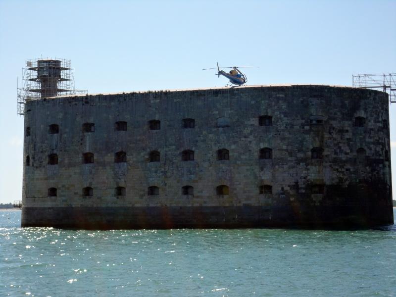 Restauration du fort et de la vigie - Du 29 août à 14 novembre 2011 - Page 6 Dsc00510