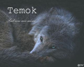 Temok - 5 ans - Solitaire Signat12