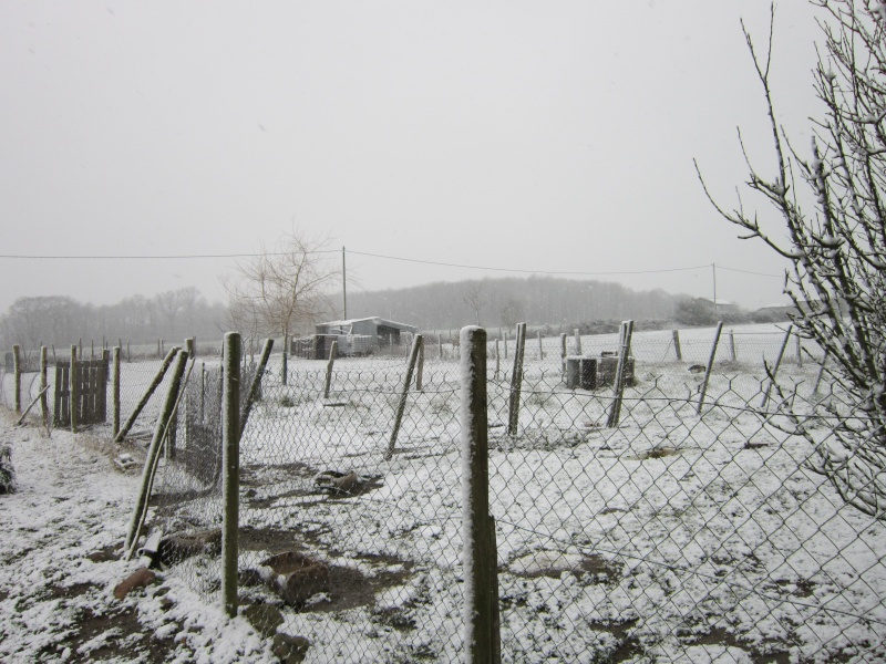 Y as pas que dans le Nord qu il y a de la neige Img_0217
