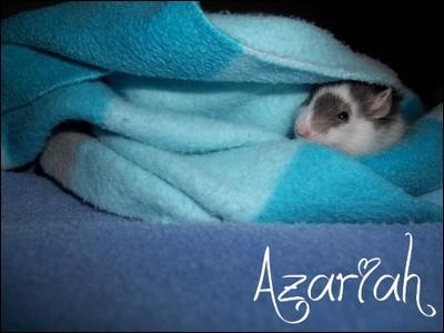 Azariah  100_1115