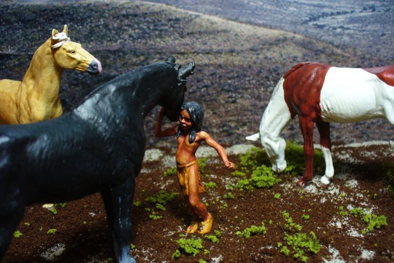 Indianerjungen 1:25 P1080113
