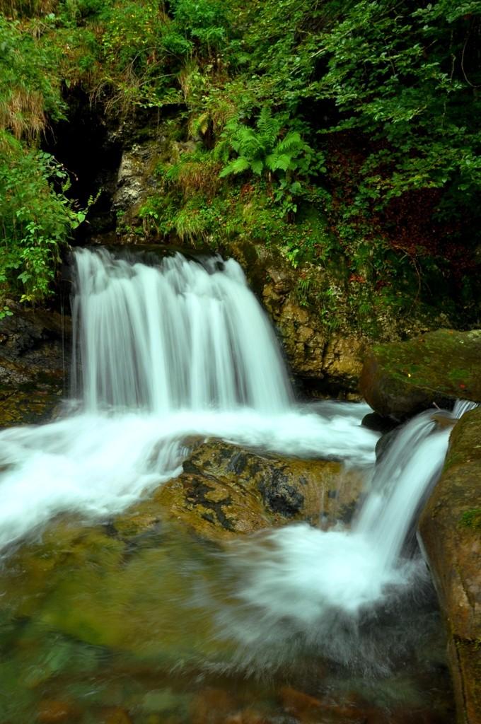 Grotta dell'Orso (Parma Francia) Bosco di Corniglio 810