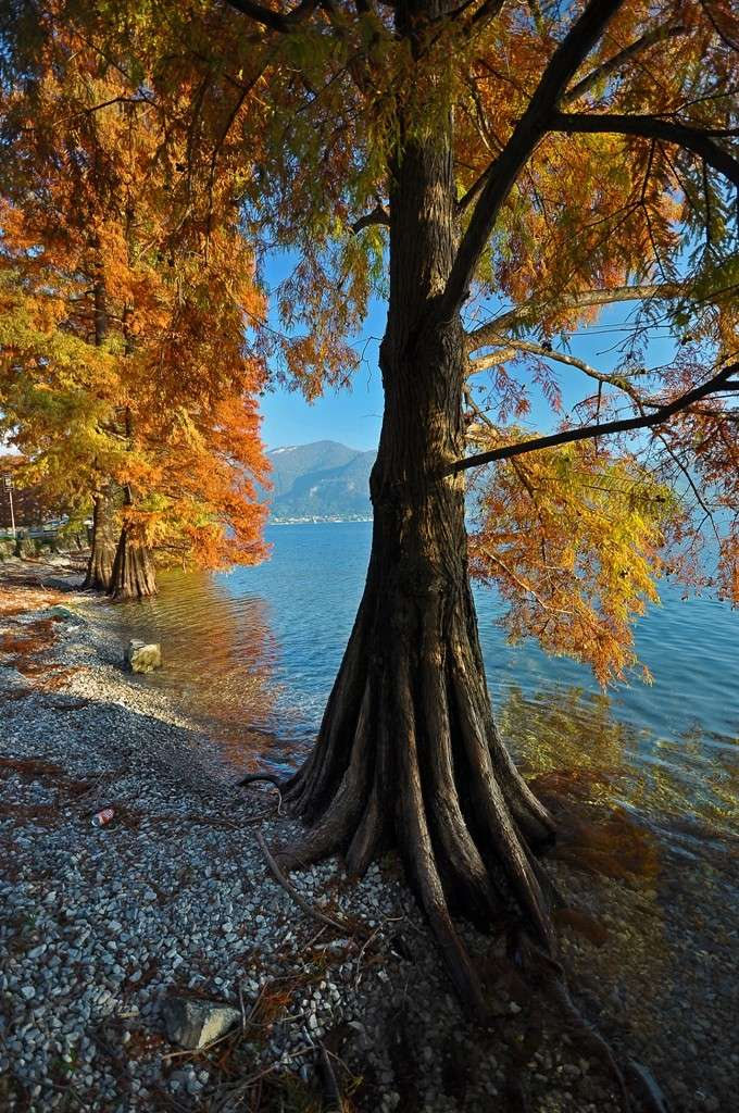 Lago d'Iseo Immagi48