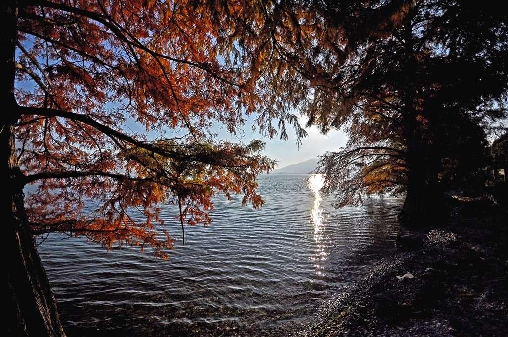 Tramonto sul lago d'Iseo Immagi50