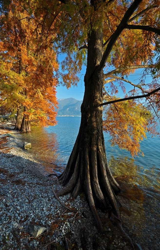 Lago d'Iseo Immagi57