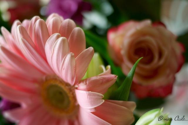 jeu de bouquet P1030920