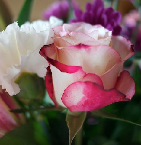 jeu de bouquet P1030921