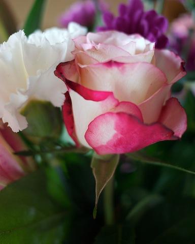 jeu de bouquet P1030923