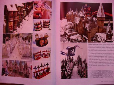 Harry Potter - Livres de collection et produits dérivés H10