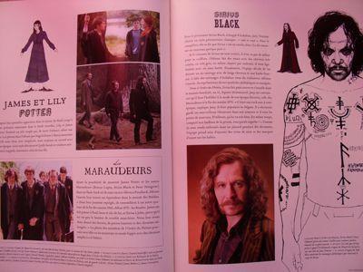 Harry Potter - Livres de collection et produits dérivés I10