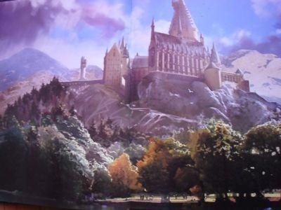 Harry Potter - Livres de collection et produits dérivés J12