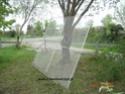 Construction d'une volière en image Dsc03015