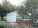 Construction d'une volière en image Dsc03410