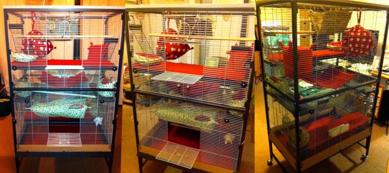 Choix d'une nouvelle cage Planch10