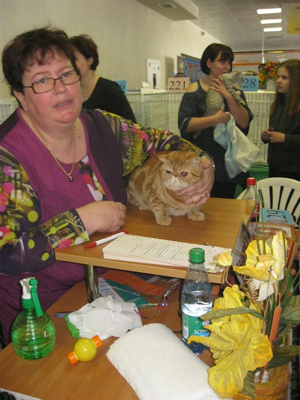 Международная выставка кошек 20-21 апреля в Минске. Фотоотчет Pictur88