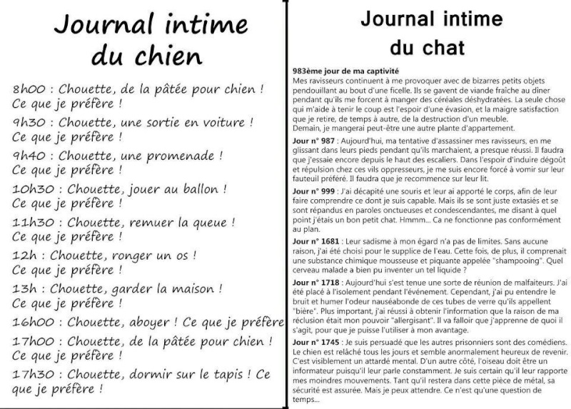 Journal intime 52941010