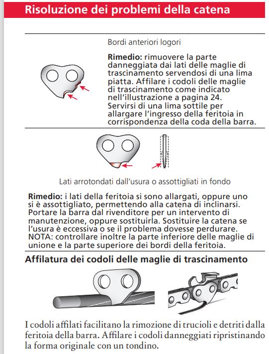 AFFILATURA DELLA CATENA TAGLIENTE parte 3 - Pagina 6 Carlto10