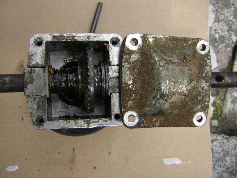 Trazione rasaserba low cost Dscn1347