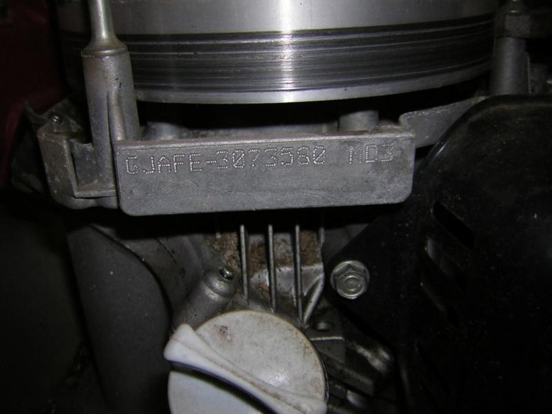 Honda GCV135: fuoriuscita cinghia distribuzione Dscn1398