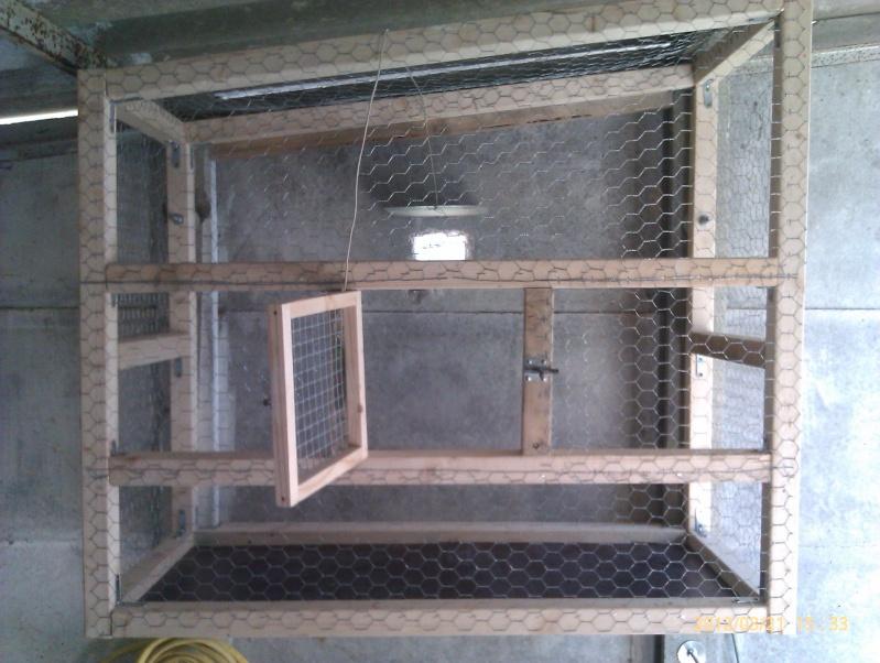 Construction, Fabrication, Volière Extérieur ! - Page 3 Imag0224