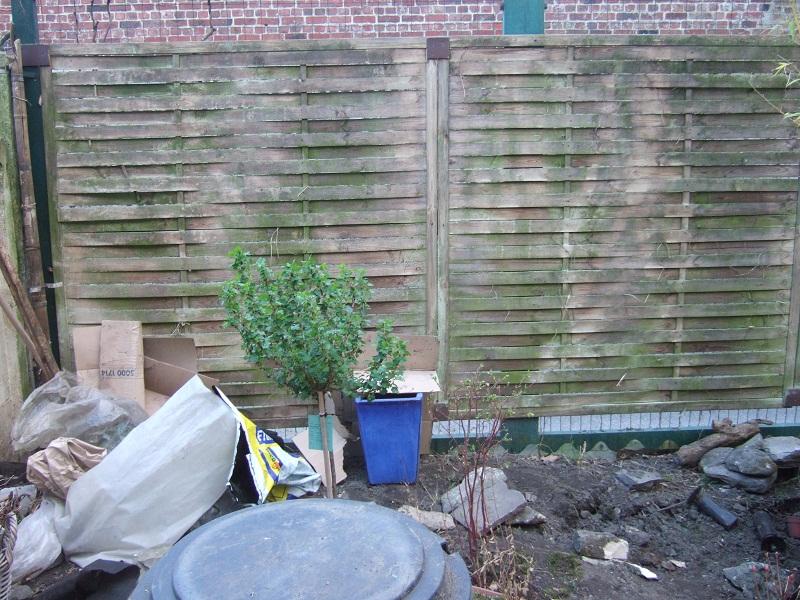 En avant pour l'aménagement de mon petit jardin !  - Page 2 2012_010