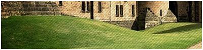 Terrenos de Hogwarts Jardin10