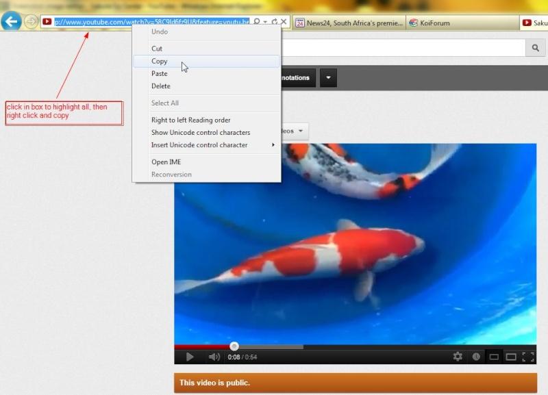 Process on uploading video's Vid610