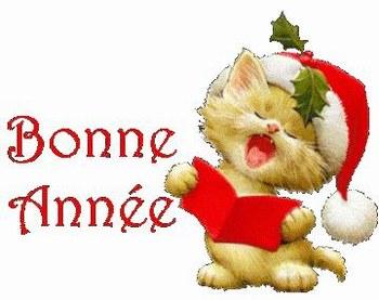 Bonne Année !!! Bonnan10
