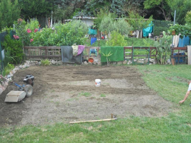 Costruzione del mio giardino.. Dscn1014