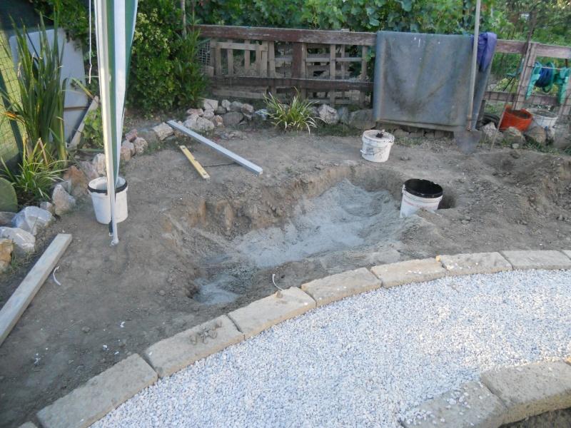 Costruzione del mio giardino.. Dscn1112