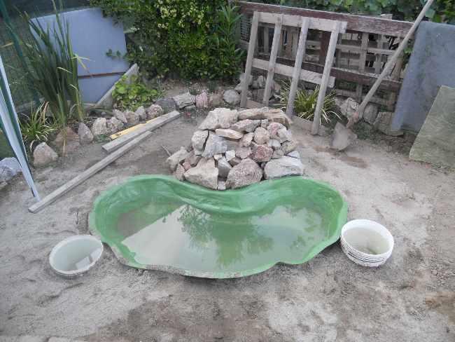Costruzione del mio giardino.. Dscn1114