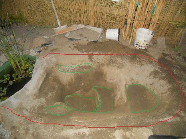 Costruzione del mio giardino.. Dscn1310