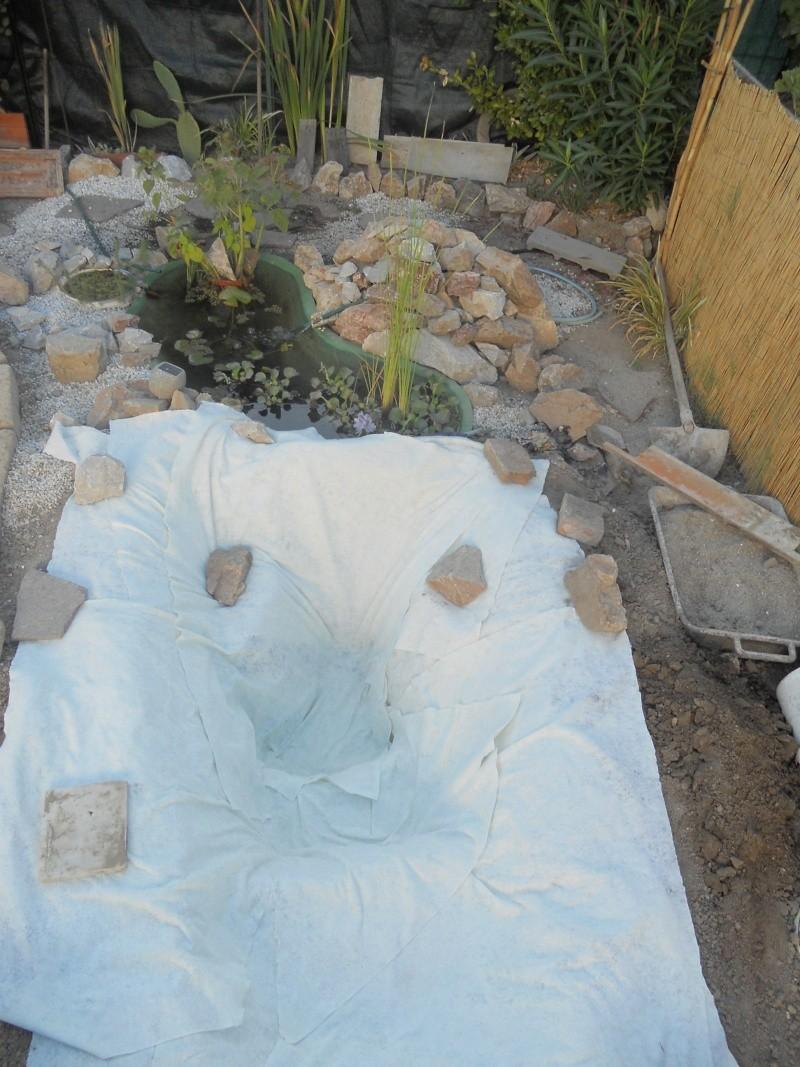 Costruzione del mio giardino.. Dscn1312