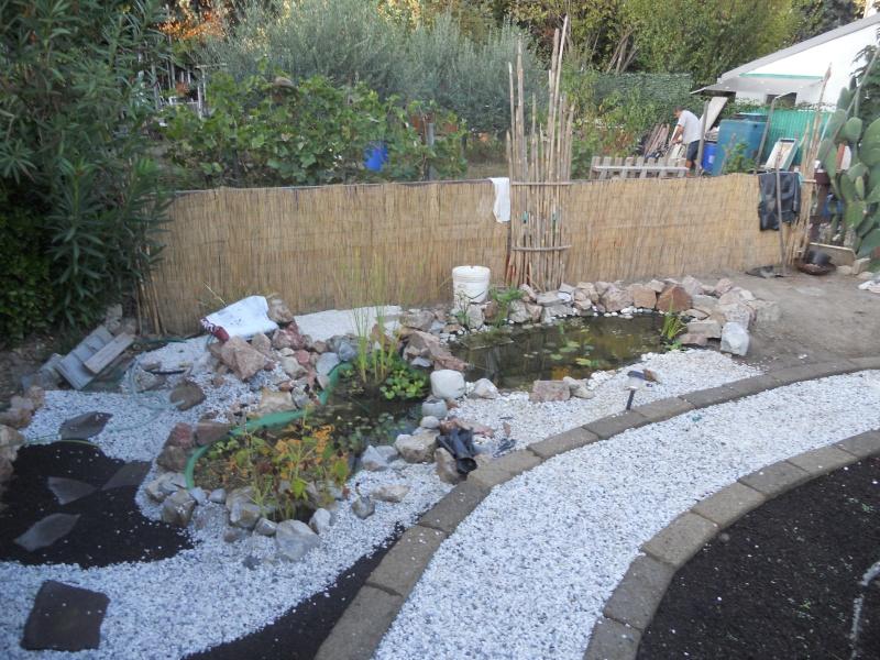 Costruzione del mio giardino.. Dscn1411
