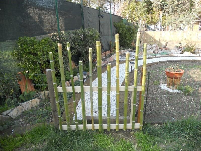 Costruzione del mio giardino.. Dscn2210