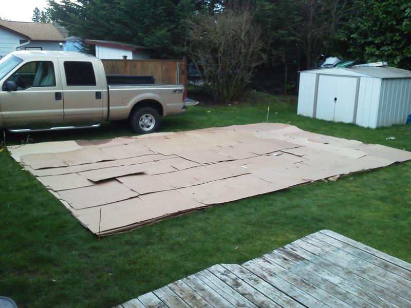 Cardboard vs garden cloth for weed block under raised beds? 2012_g11