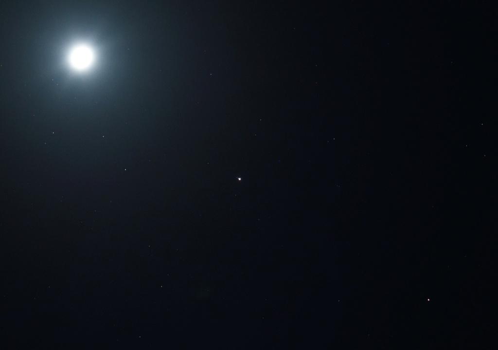 Off Topic New Comet  - Page 3 Otony_10