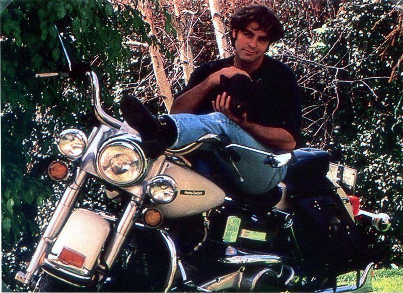 Ils ont posé avec une Harley - Page 6 Cloone10