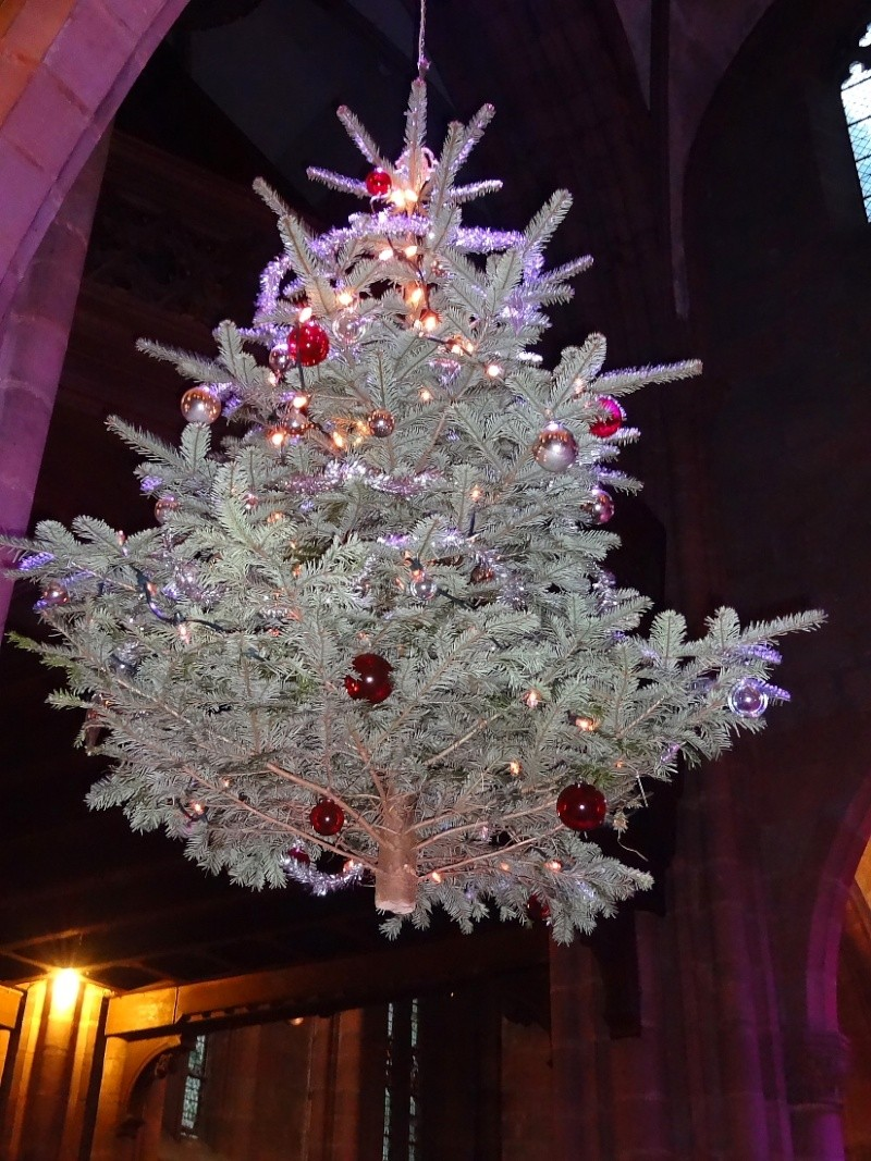 Bientôt Noël Dsc00812