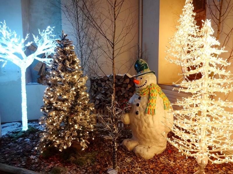 Bientôt Noël Dsc00817