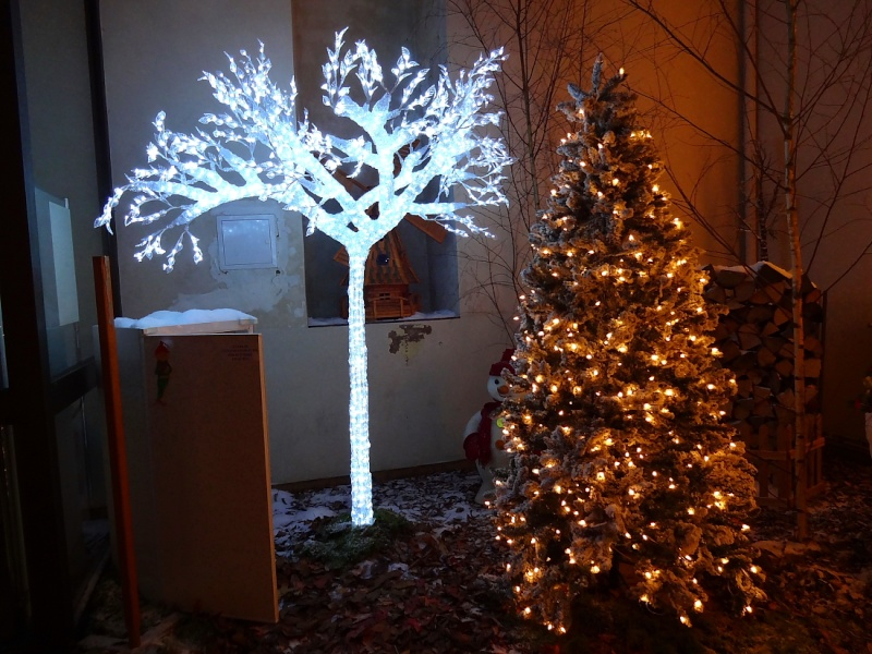 Bientôt Noël Dsc00818